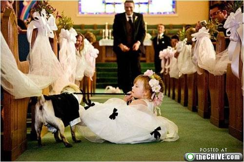 Wedding Party Issues